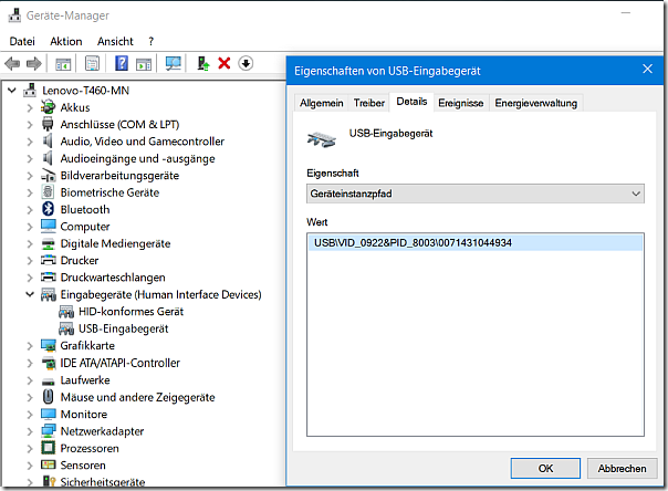 USB Vendor ID and Product ID in device manager